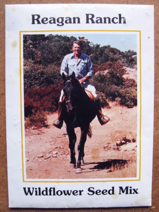 reagan-ranch-wildflower-seed-1