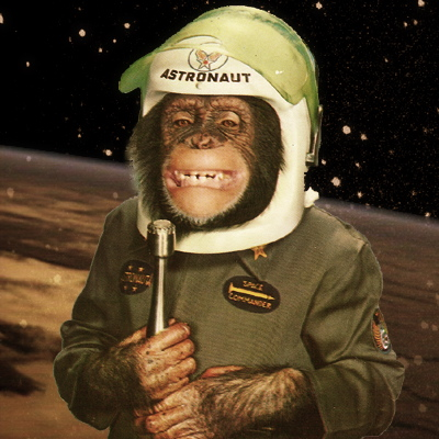 space chimp ham monkey astronaut grawitz tumor